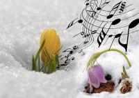 Весна, весна, пришла весна