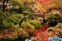 Пять лучших цветочных парков мира