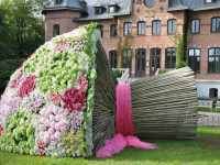 ТОП 5 цветочных рекордов Гиннеса