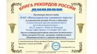 Нижегородские рекорды Гиннеса