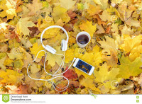 Осенний плейлист для путешествий