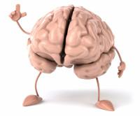 Где можно потренировать мозги?
